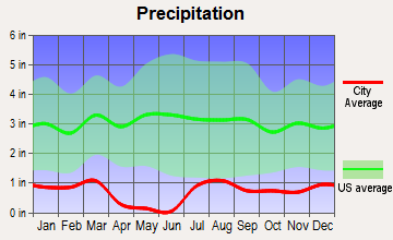 Sun Lakes, Arizona average precipitation