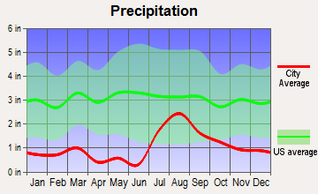 Taylor, Arizona average precipitation