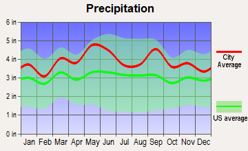Discovery-Spring Garden, Maryland average precipitation