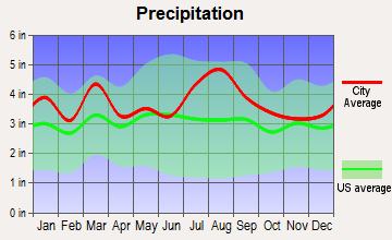 West Pocomoke, Maryland average precipitation