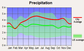 Cheshire, Massachusetts average precipitation