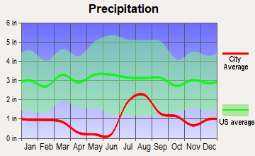 Drexel Heights, Arizona average precipitation