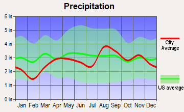 North Muskegon, Michigan average precipitation