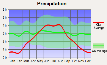 Delano, Minnesota average precipitation