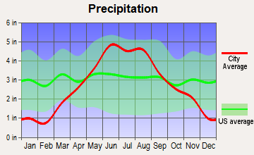 Dellwood, Minnesota average precipitation