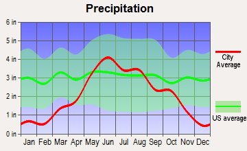 Lowry, Minnesota average precipitation