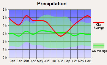 Hampton, Arkansas average precipitation