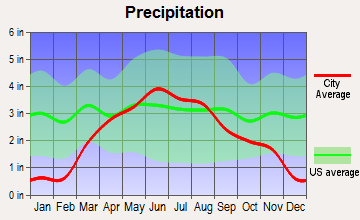 Springfield, Minnesota average precipitation