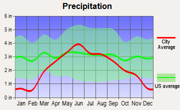 The Lakes, Minnesota average precipitation