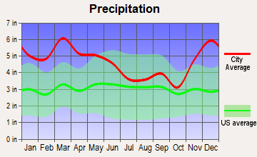 Plantersville, Mississippi average precipitation