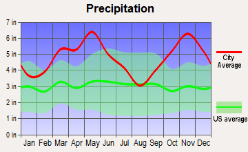 Hot Springs, Arkansas average precipitation