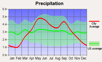 Oakwood, Missouri average precipitation