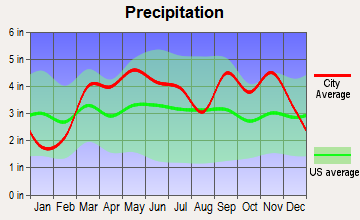 Ozark, Missouri average precipitation