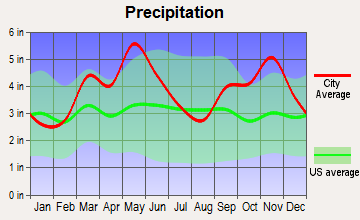 Kibler, Arkansas average precipitation