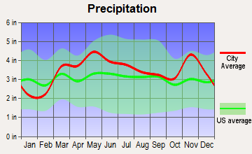 St. Mary, Missouri average precipitation