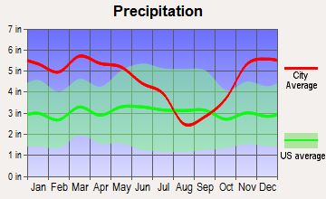 Lake Village, Arkansas average precipitation