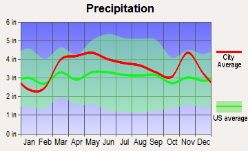 Twin Oaks, Missouri average precipitation