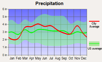 Vinita Terrace, Missouri average precipitation