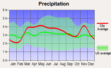 Warson Woods, Missouri average precipitation