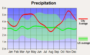 Lonoke, Arkansas average precipitation
