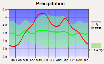 East Lynne, Missouri average precipitation
