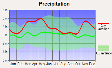 Delta, Missouri average precipitation