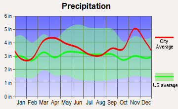 Mammoth Spring, Arkansas average precipitation