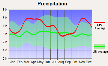 Bernie, Missouri average precipitation