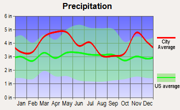 Bell City, Missouri average precipitation