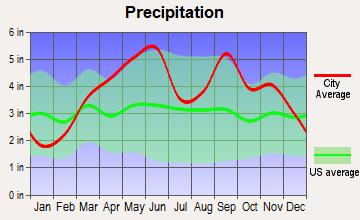 Airport Drive, Missouri average precipitation