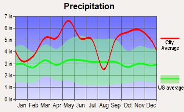 Mena, Arkansas average precipitation
