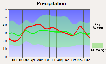 Moline Acres, Missouri average precipitation