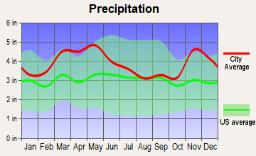 Morley, Missouri average precipitation