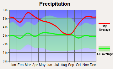 Monticello, Arkansas average precipitation