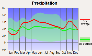 Hillsboro, Missouri average precipitation
