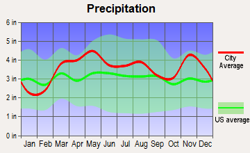 Iron Mountain Lake, Missouri average precipitation