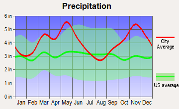 Pottsville, Arkansas average precipitation