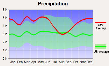 Smackover, Arkansas average precipitation