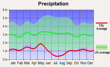 Spring Creek, Nevada average precipitation