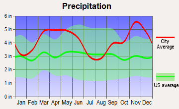 Twin Groves, Arkansas average precipitation
