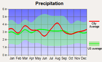 Brigantine, New Jersey average precipitation