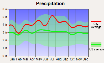 Dunellen, New Jersey average precipitation