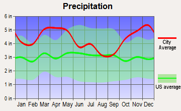 White Hall, Arkansas average precipitation
