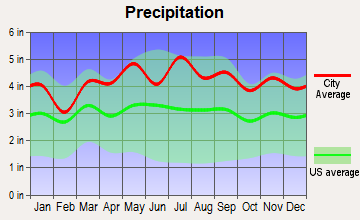 Roselle, New Jersey average precipitation