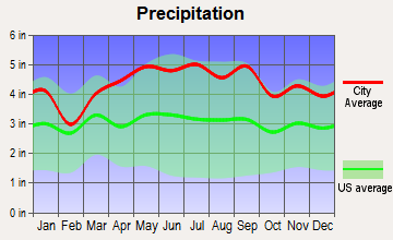 Succasunna-Kenvil, New Jersey average precipitation