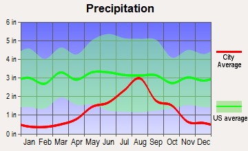 Fort Sumner, New Mexico average precipitation