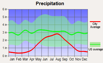 Dora, New Mexico average precipitation