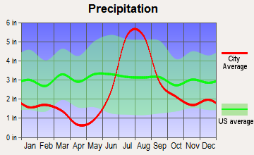 Cloudcroft, New Mexico average precipitation