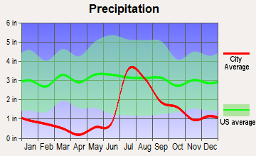 Bayard, New Mexico average precipitation