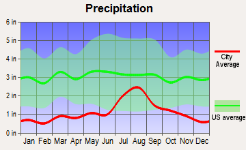 South Rio Arriba, New Mexico average precipitation